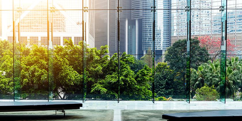 view of street garden through large glass windows
