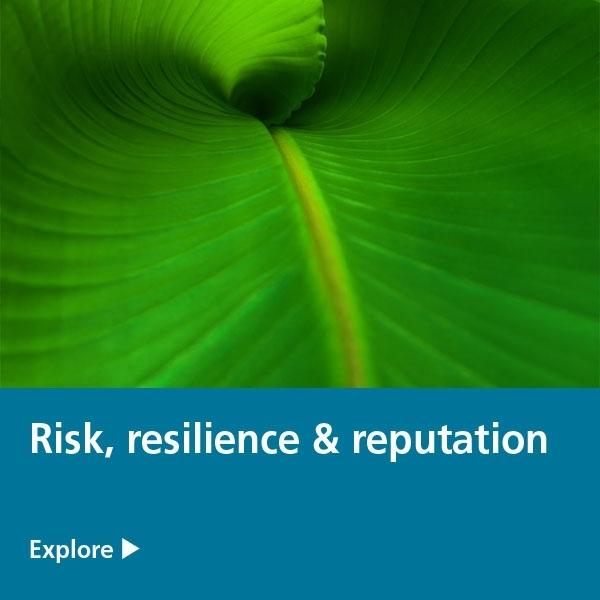 risk resilience reputation tile - banana leaf