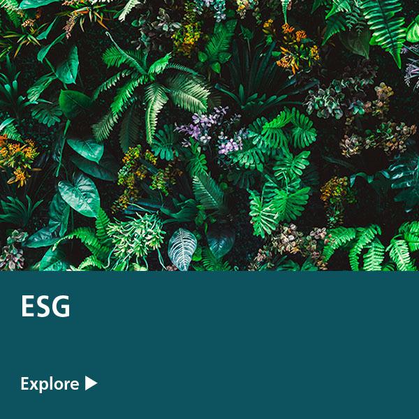 ESG Expertise tile