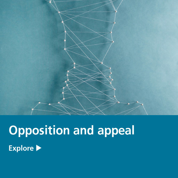 IP tile - opposition and appeal