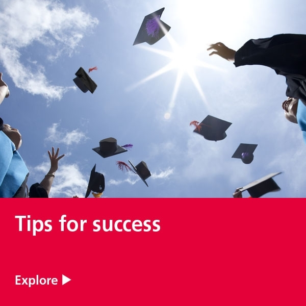 tips for success tile