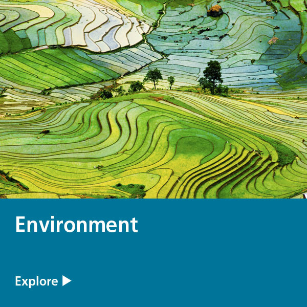 environment expertise tile