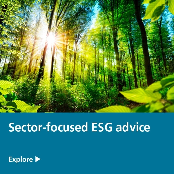 sector focused esg advice - green forest