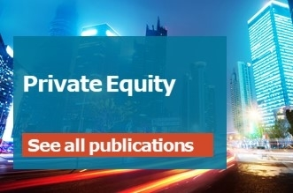 publication private equity english 330x220