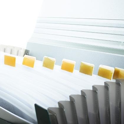 blank file opening