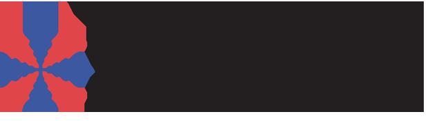 LIDW 2019 logo