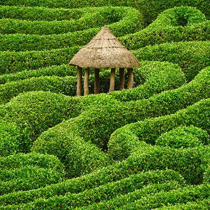 green maze with thatched roof house on stilts in the center