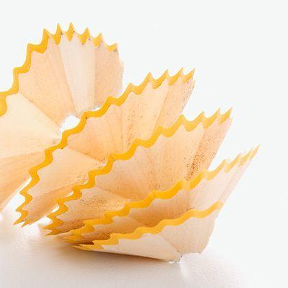 closeup of spiral pencil shavings