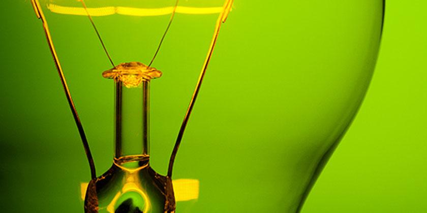 light bulb against green background